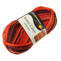 Włóczka Bravo Color - Melanż kolorów nr. 02087