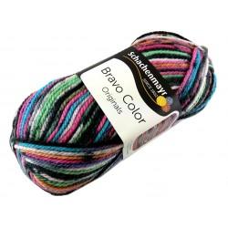 Włóczka Bravo Color - Melanż kolorów nr. 02094