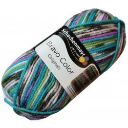 Włóczka Bravo Color - Melanż kolorów nr. 02083