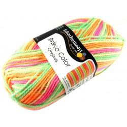 Włóczka Bravo Color - Melanż kolorów nr. 02100