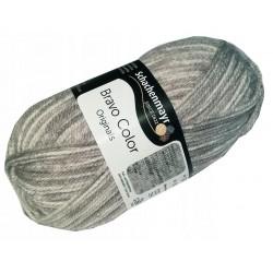 Włóczka Bravo Color - Melanż kolorów nr. 02110