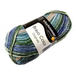 Włóczka Bravo Color - Melanż kolorów nr. 02122